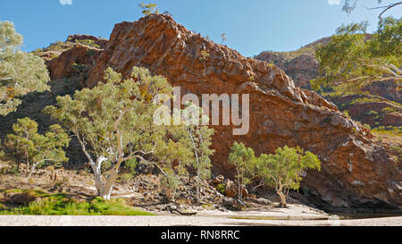 ghost gums at ormiston gorge in the west macdonnell ranges - Stock Photo