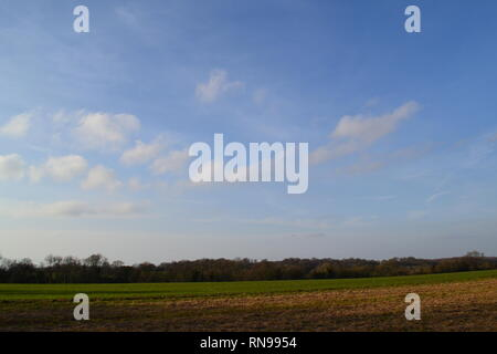 Boring but lovely flat countryside on the plateau of the North Downs near Shoreham, Kent on a warm day in February that felt like global warming - Stock Photo