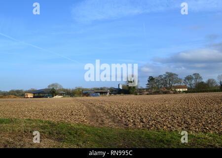 Scenes near Dunstall Farm, Shoreham, Kent, England, on a strangely warm February day, 2019. Many walkers enjoyed temp of 16-17C - Stock Photo