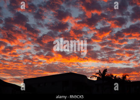 Vivid orange and red sunset clouds over house and palm trees silhouettes - Stock Photo