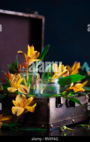 Spring floral concept with yellow alstroemeria flowers in a suitcase. Black background with copy space. Sunny still life - Stock Photo