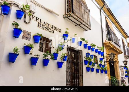 White walls and blue flower pots at Calle Velazquez Bosco near Calleja de las Flores (The Street of Flowers) - Stock Photo