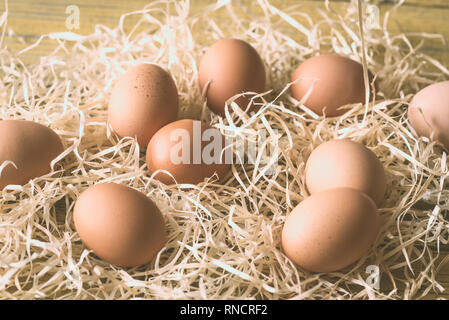 Raw chicken eggs in the hay: top view - Stock Photo
