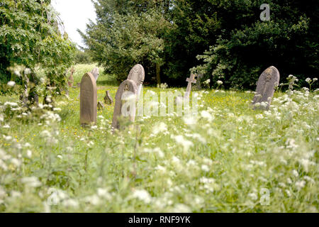 The overgrown graveyard used by the former Three Counties Asylum, later known as Fairfield Hospital (now housing), until its closure in the 1990s - Stock Photo