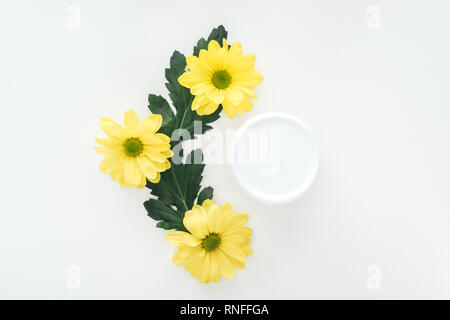 top view of composition with yellow chrysanthemums and beauty cream in bottle on white background - Stock Photo