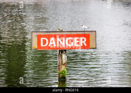 Danger sign on the Thames river with a Black-headed gull (Chroicocephalus ridibundus) sitting on the sign near Marlow in Buckinghamshire, UK - Stock Photo