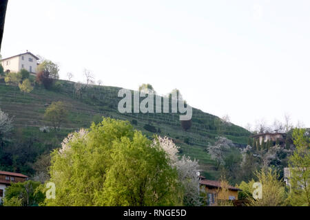 Montevecchia-Park by Via Pertevano 8 - Stock Photo