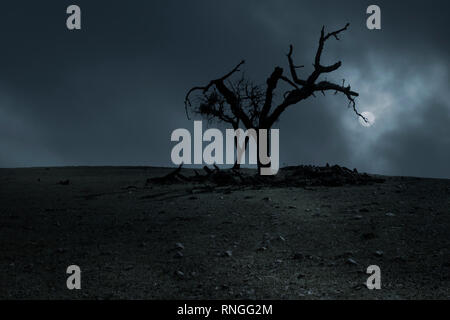 Spooky halloween background with dead tree in a full moon night - Stock Photo