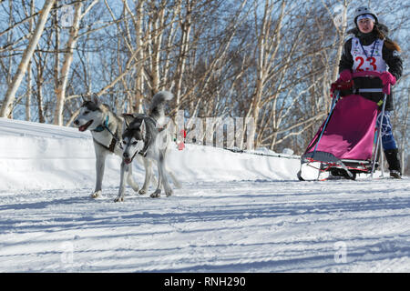 Kamchatka Kids Competitions Sled Dog Race Dyulin (Beringia). Running dog sled Siberian husky young musher Gantimurova Elvira. - Stock Photo