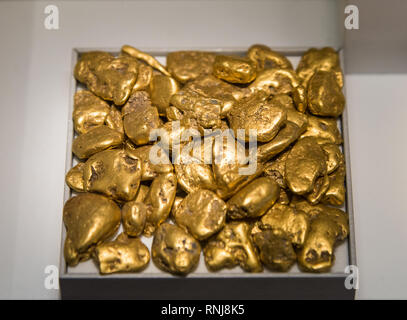 Gold nuggets. The Field Museum, Chicago, Illinois, USA. - Stock Photo