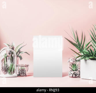 Blank white sheet mock up and green house plants in pots, glass terrarium and jars on table at pastel pink background. Various succulent and cactus pl - Stock Photo
