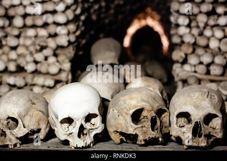 Human skulls and bones, Halloween background - Stock Photo