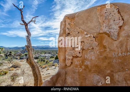 The Ryan Ranch house is an adobe structure built in 1896 in what is now Joshua Tree National Park, CA. - Stock Photo