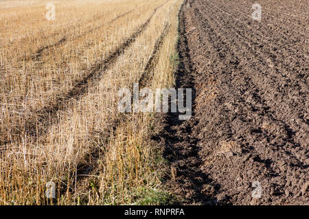 Plowed soil and meadow, Germany, Europe
