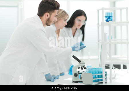 group of young scientist experimenting in the laboratory - Stock Photo