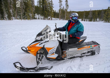 Man snowmobiling wearing a helmet and goggles on forest trail in Grand Lake Colorado - Stock Photo