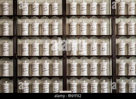 El Centro de Plantas Medicinales (Medicinal Plants centre) Science museum in Tejeda on Gran Canaria, Canary Islands, Spain - Stock Photo