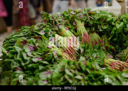 Bunches of Chinese spinach