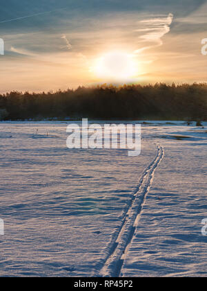 Tracks of a lonely cross-country skier on a remote meadow in the Entzia mountain range, Alava, Basque Country, Spain - Stock Photo