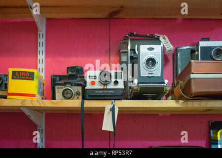 A collection of vintage cameras are displayed for sale at an antique store.