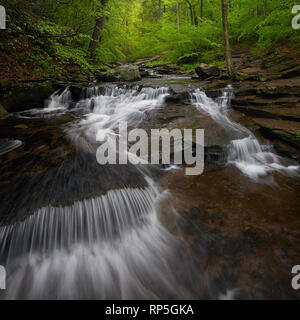 Spring waters flow through Ricketts Glen in Pennsylvania - Stock Photo