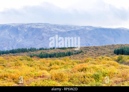Landscape view of Thingvellir mountains on golden circle in Iceland during day and national park with nobody and yellow autumn foliage - Stock Photo