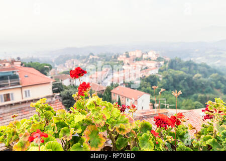 Chiusi Scalo houses buildings in Umbria, Italy or Tuscany with town cityscape and focus on red geranium flowers in garden foreground - Stock Photo