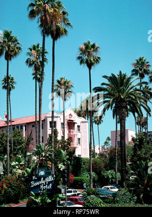 Towering palm trees frame some of the pink facade of the famous Beverly Hills Hotel that has been the home away from home for movie stars and other celebrities since it opened in 1912, which was two years before its namesake city of Beverly Hills was incorporated in Los Angeles County, California, USA. Today the luxurious hotel is known as the Pink Palace and has 210 guest rooms and 23 secluded bungalows surrounded by 12 acres (4.86 hectares) of lush tropical gardens and exotic flowers. Hollywood stars are often seen in its premier dining spot, the Polo Lounge. - Stock Photo