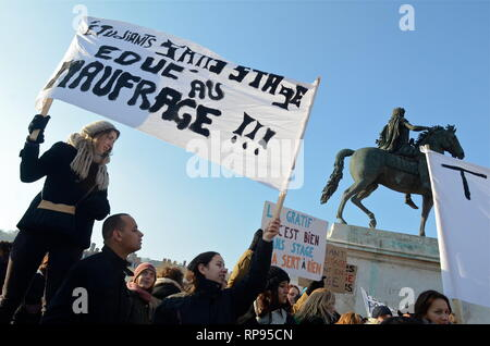 Future professionals in the social field march to defend a threatened profession, Lyon, France - Stock Photo