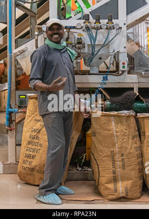A worker at work in the Lockhart tea factory using new macinery smiling posing for the camera. - Stock Photo