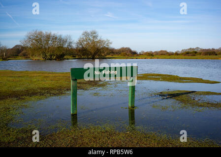 A green permanent wooden No fishing sign at a flooded  Janesmoor pond in the New Forest Hampshire England. - Stock Photo