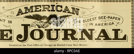 . American bee journal. Bee culture; Bees. Entered at the Post-Office at Chicago as Second-Class Mail-Matter. PublUIied YVeekly at $1.00 a Year by Cteorgrc W. York &: Co., S»4 l>earborii St. QEORQB W. YORK, Editor. CHICAGO, ILL, JUNE 23,1904. Vol, XLIV-No, 25, Editorial Comments ) The Marketing of Honey. This is a subject that has been harped on so long that we suppose many readers are almost tired of it. But the time will soon be here again, when there will be honey to sell—the new crop—and no doubt a number of bee-keepers will be glad to learn the very best way to dispose of it. We he - Stock Photo