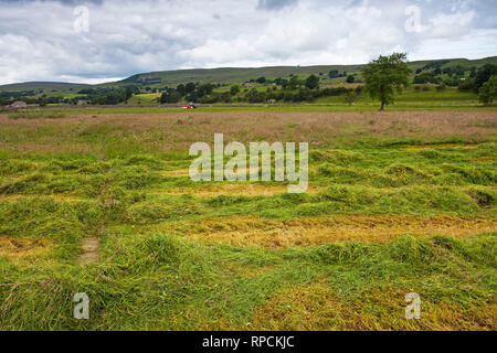 Farmer cutting the hay Askrigg Bottoms Meadow Askrigg Wensleydale Yorkshire Dales National Park Yorkshire England UK July 2016 - Stock Photo
