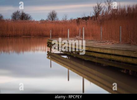 Wooden walkway through grassy reefs. Utvalinge, Sweden. - Stock Photo
