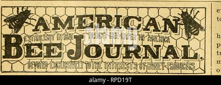 . American bee journal. Bee culture; Bees. 440 AMERICAN BEE JOURNAL. July 12, 1900.. PUBLISHT ^'EEKLY BY GEORGE w. York & Company, 116 Michigan Street, Chicago, III. [Entered at the Post-Office at Chicago as Second-Class Mail-Matter.] every month the struggle is continued means dollars of loss to the struggler ? As it is not our money that is sunk in new papers, per- haps we should keep quiet and let the starters learn by ex- perience. And yet, it seems to us that it would be just a trifle hard-hearted in us not to oflfer a warning word to the man of small capital, and less experience, who - Stock Photo