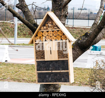 Insect hotel hanging on a tree in urban parking - city environment protection - Stock Photo
