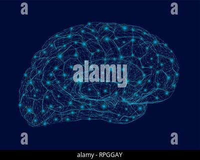 Wireframe of the human brain with glowing lights. Polygonal human brain from blue lines on a dark background. 3D. Vector illustration. - Stock Photo