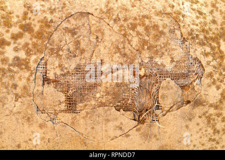 reinforcement in an old concrete wall with mold and moss. background. texture - Stock Photo