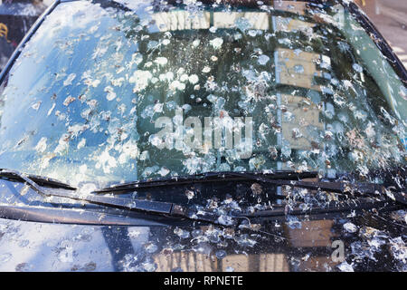 Bird pigeon droppings on car windshield that has been long-term parked in Queens, New York City. - Stock Photo