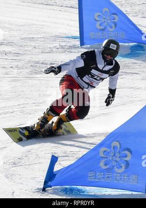 Zhangjiakou, China. 23rd Feb, 2019. Oskar Kwiatkowski of Poland competes during the men's Parallel Giant Slalom final of FIS Snowboard World Cup 2018-2019 in Zhangjiakou of north China's Hebei Province, on Feb. 23, 2019. Credit: Zhu Xudong/Xinhua/Alamy Live News - Stock Photo