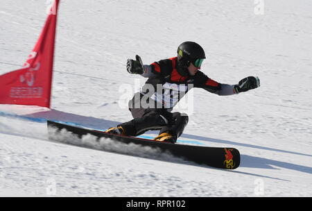 Zhangjiakou, China. 23rd Feb, 2019. Andrey Sobolev of Russia competes during the men's Parallel Giant Slalom final of FIS Snowboard World Cup 2018-2019 in Zhangjiakou of north China's Hebei Province, on Feb. 23, 2019. Andrey Sobolev won the second. Credit: Zhu Xudong/Xinhua/Alamy Live News - Stock Photo