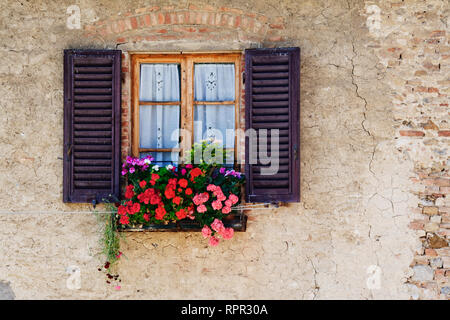 Colorful Flowers in Window Flower Box - Stock Photo