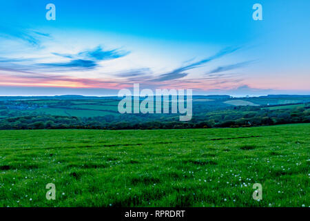 Evening time dusk sunset over fields of grasss and trees in Cornwall - Stock Photo