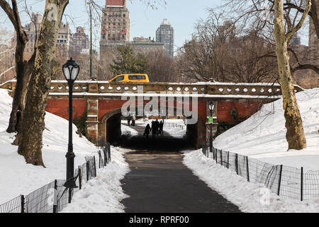 NEW YORK, NY - FEBRUARY 18:  Winter day in Central Park in New York City , USA on February 18, 2015 - Stock Photo