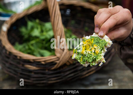 Nettle and Wild Garlic Pesto canape, wild food foraged in Sussex, UK - Stock Photo