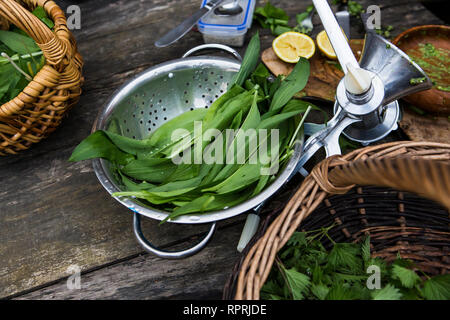 Foraged edible plants in Sussex, UK - Stock Photo