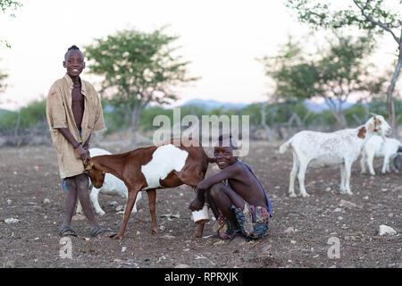 Himba boys taking care of goats, Epupa, Namibia, Africa - Stock Photo