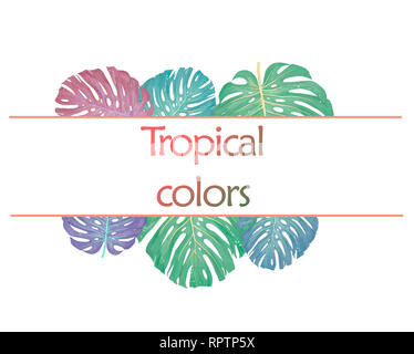 Trendy Summer Tropical Leaves Design card colors leafs on white background. - Stock Photo