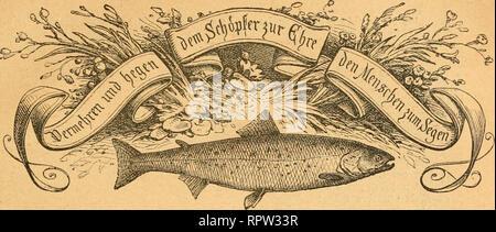 allgemeine-fischerei-zeitung-aijerifdje-ifdem==jeittttt9-@r-g-an-be-ampatetifden-fifeteiseteineis-ilr-5-iindini-1-wci-1883-viii-aprfl-dif-ftcilfcc-