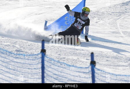 Zhangjiakou, China. 23rd Feb, 2019. Tim Mastnak of Slovenia competes during the men's Parallel Giant Slalom final of FIS Snowboard World Cup 2018-2019 in Zhangjiakou of north China's Hebei Province, on Feb. 23, 2019. Tim Mastnak won the first. Credit: Zhu Xudong/Xinhua/Alamy Live News - Stock Photo